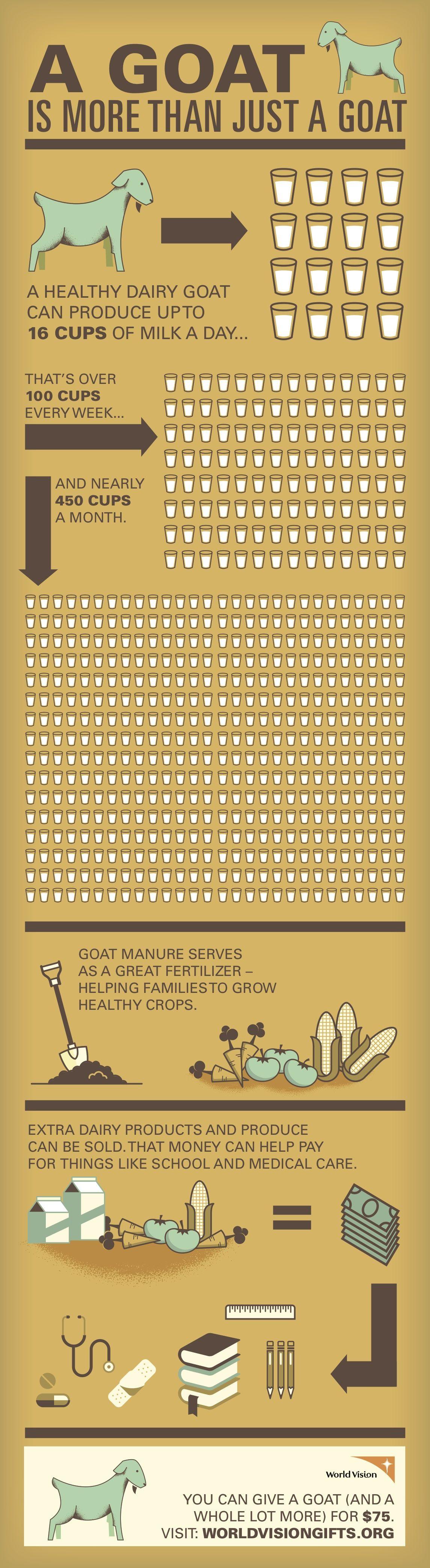goat infographic