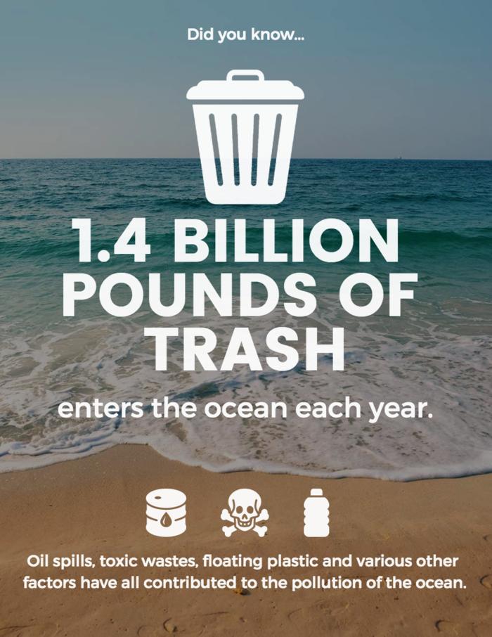 nonprofit infographic