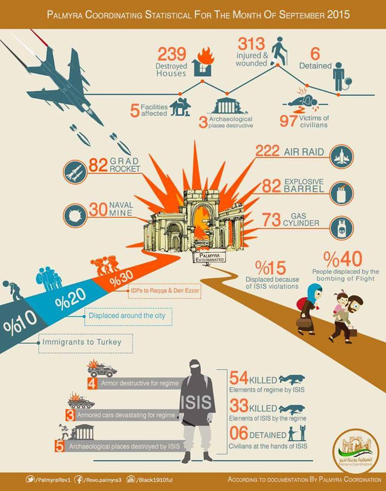 palmyra infographic english