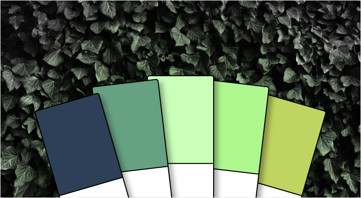 color-blog-header