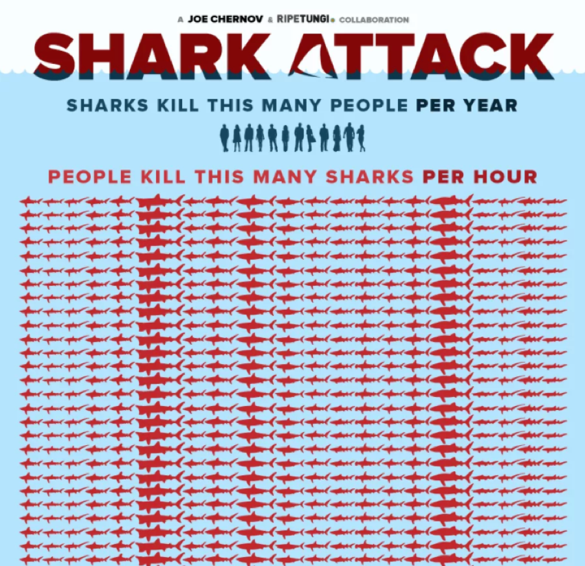 Infographics: Shark Attack