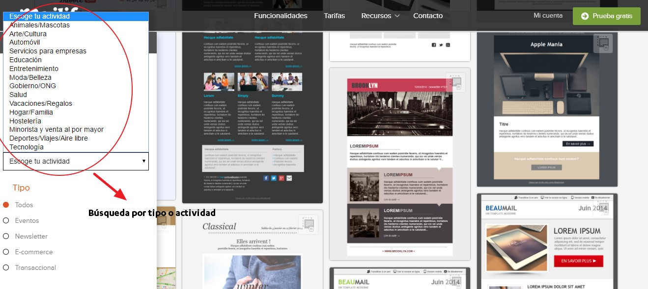 diseñar un newsletter