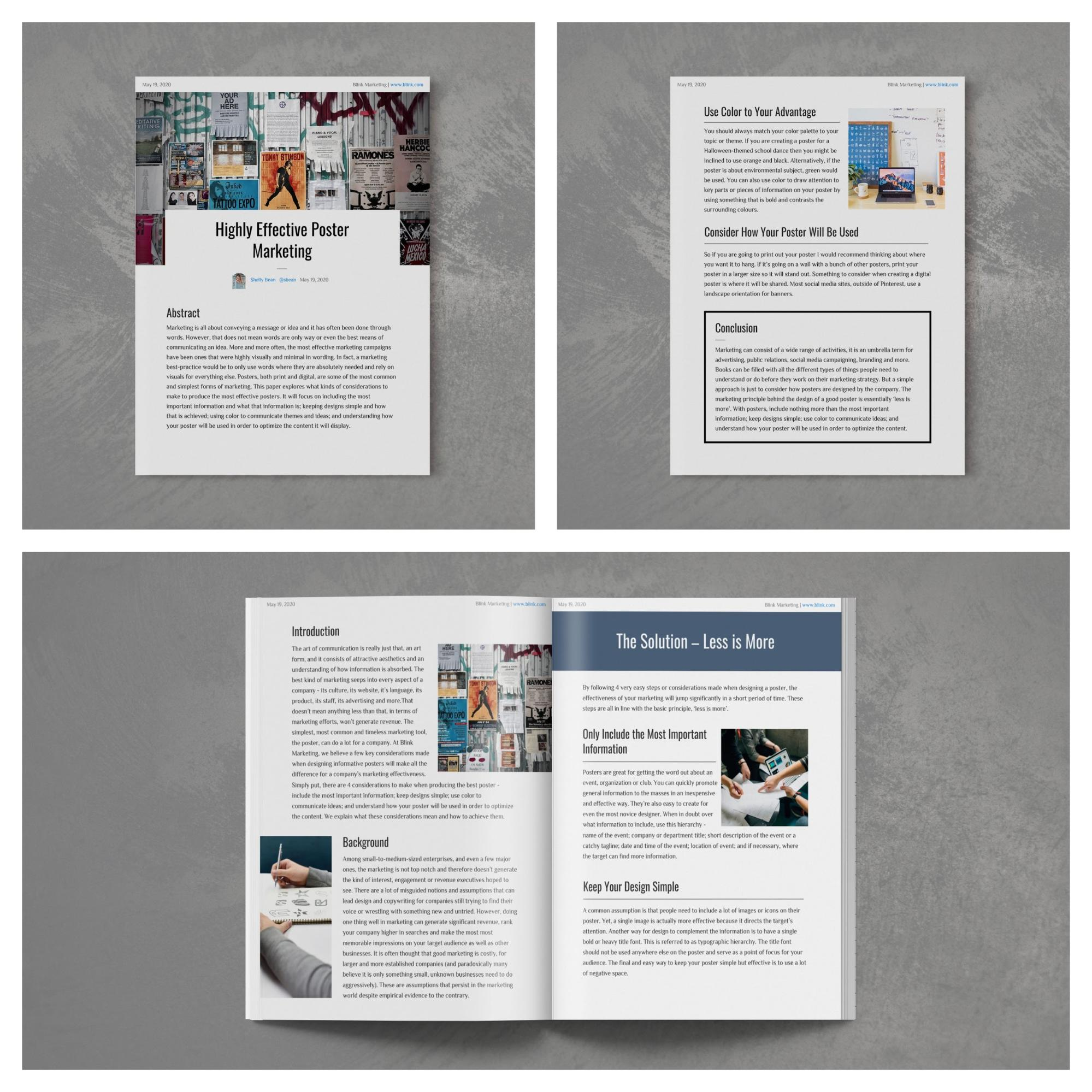 White Paper Examples 21