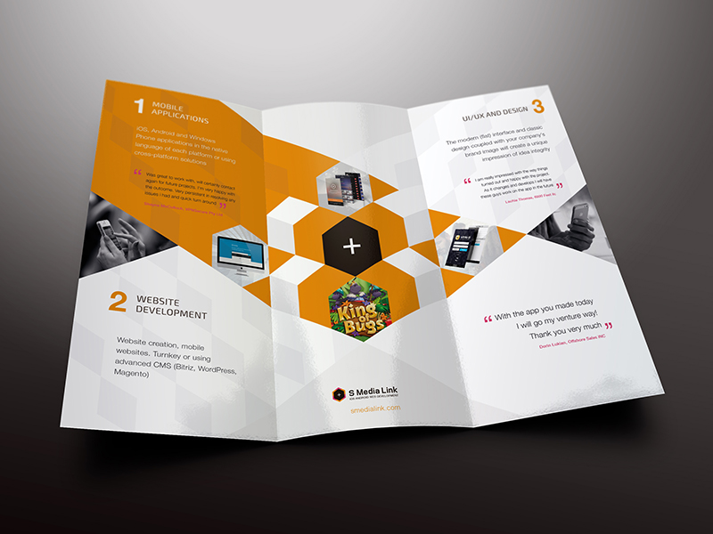 Professional Trifold Marketing Brochure Example