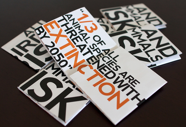 Typography Marketing Brochure Examples