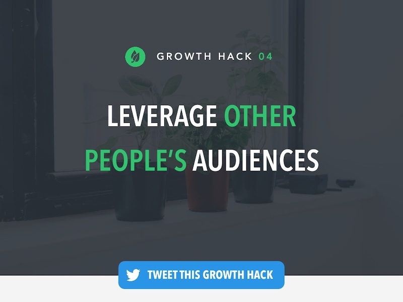 Growth Hack Marketing Presentation Ideas