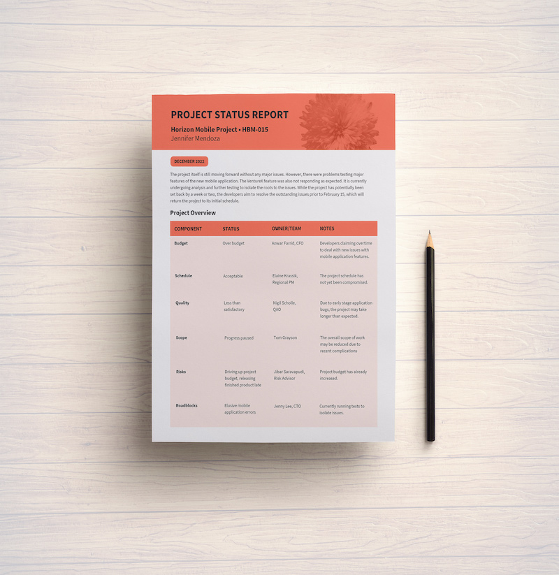 Monthly Project Plan Template