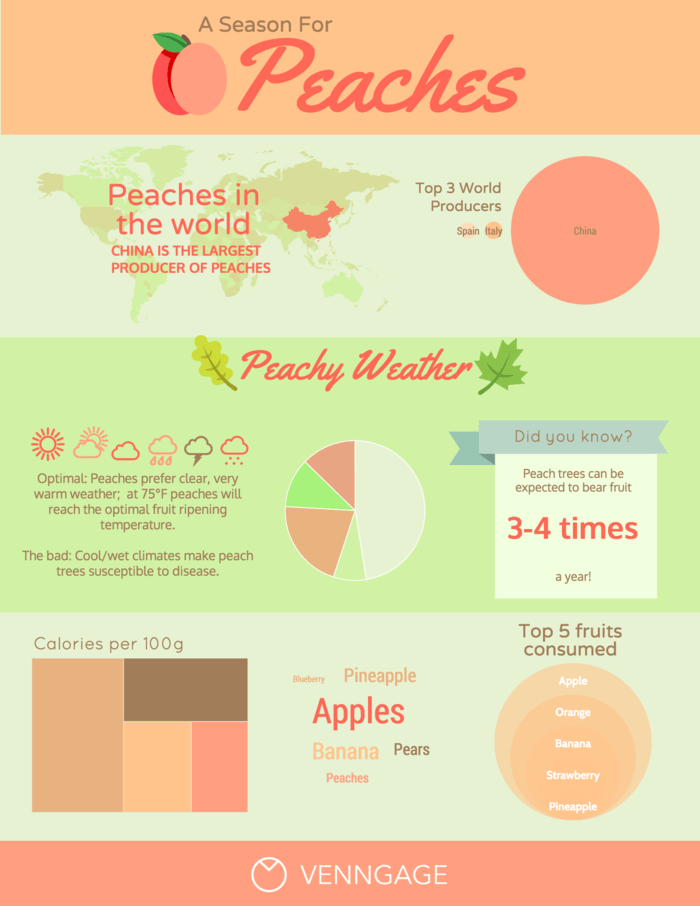 Peach Weekly Report Infographic Template