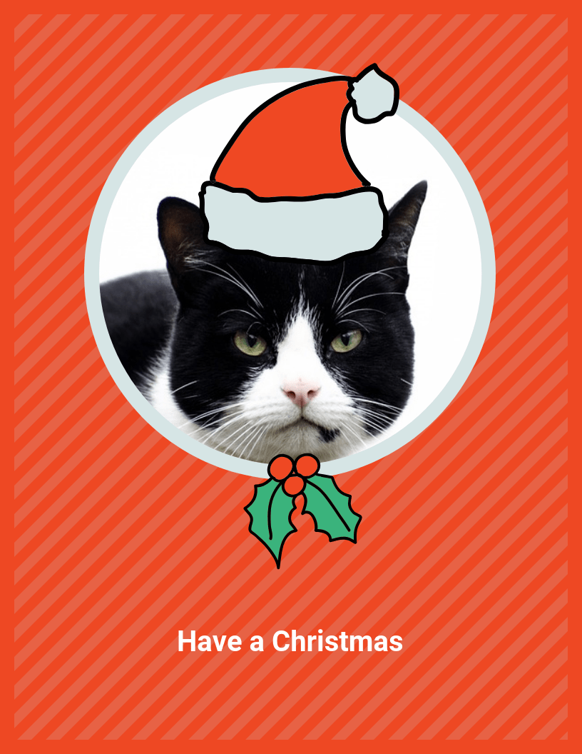 funny cat christmas card template