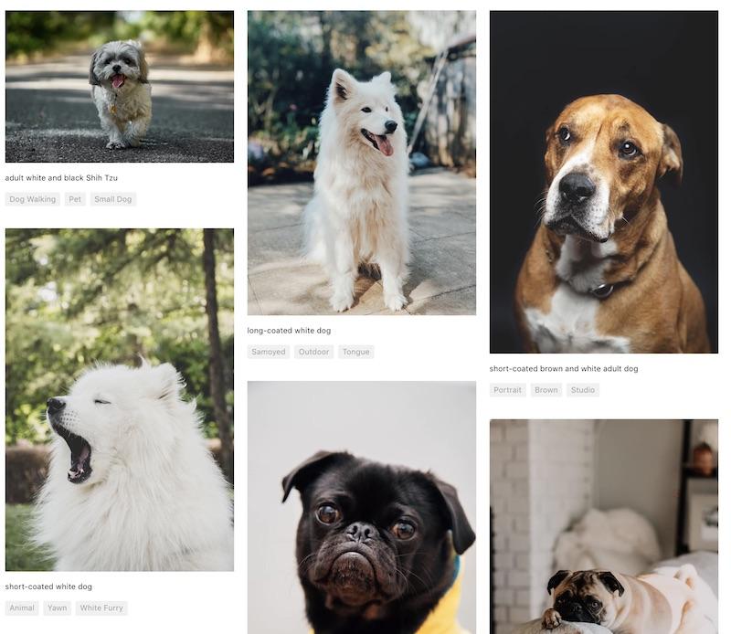 Ways to Incorporate Stock Photos Example 3