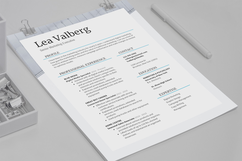 Basic Professional Marketing Resume Template