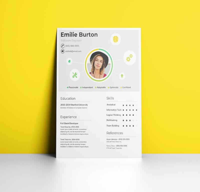 Creative Data Viz Infographic Resume Design Template