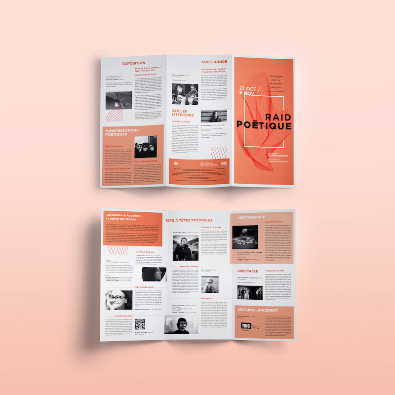 Creative Marketing Trifold Brochure Example