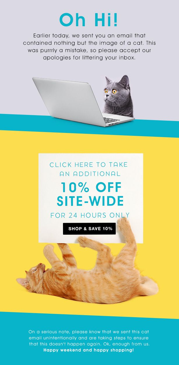 Fun Email Newsletter Template