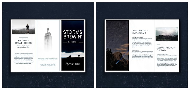 Professional Business Marketing Tri Fold Brochure Template