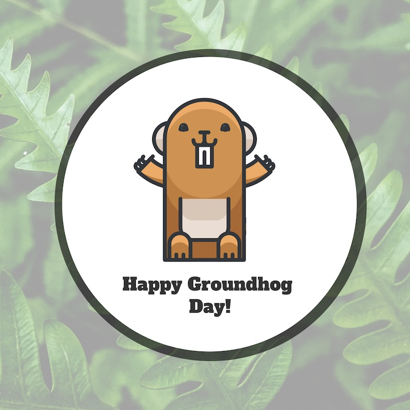 Groundhog Day - Social Media Holiday Templates2