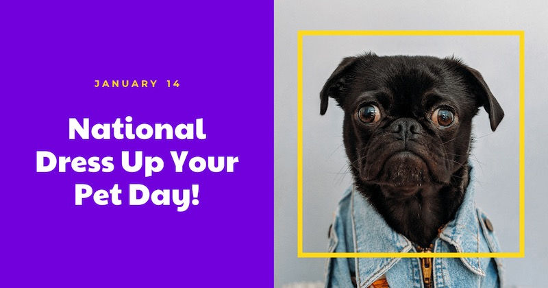 Love Your Pet Day - Social Media Holiday Templates5