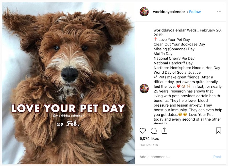 Love Your Pet Day - Social Media Holiday Templates7