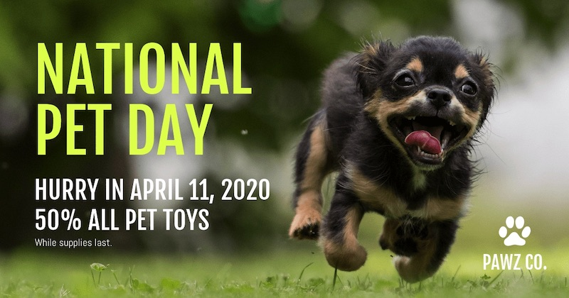 National Pet Day Social Media Holiday Templates1
