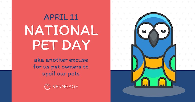 National Pet Day Social Media Holiday Templates8