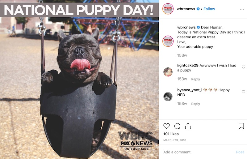 National Puppy Day - Social Media Holiday Templates4
