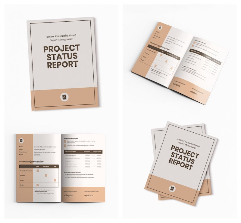Project Status Business Report Template