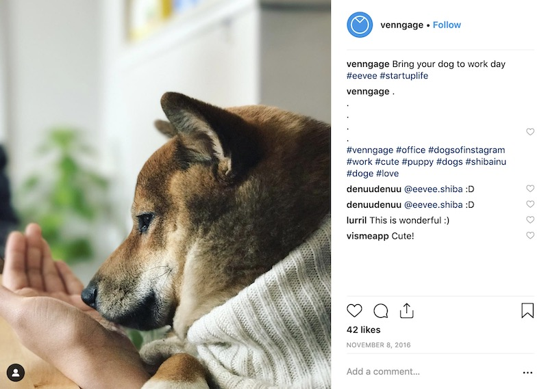 Take Your Dog To Work Day - Social Media Holiday Templates3
