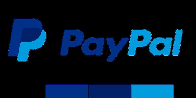 Paypal logo monochromatic logo design tips