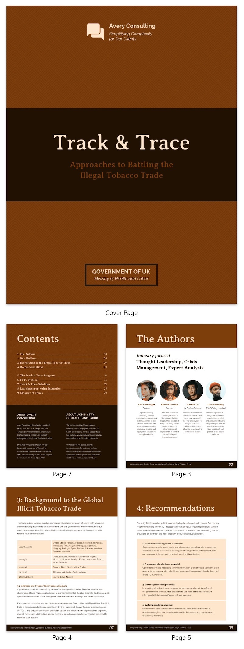 Brown Business White Paper Examples