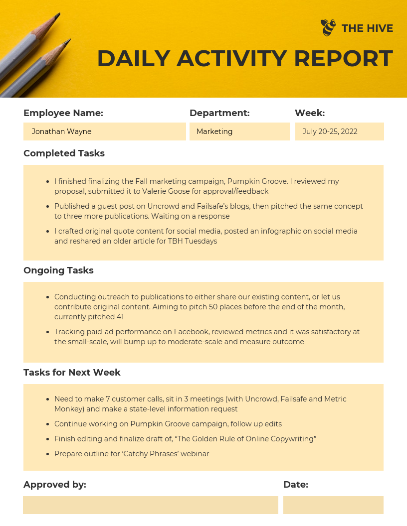 Employee Daily Activity Business Report Template
