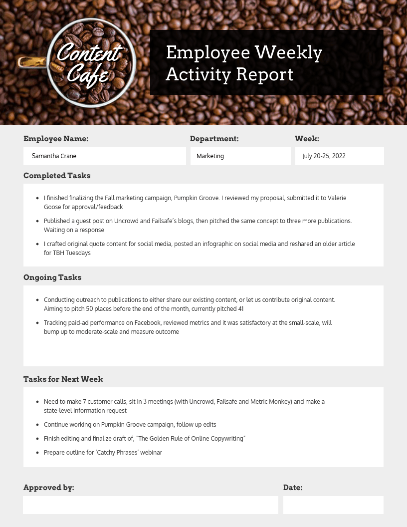 Employee Weekly Status Business Report Template