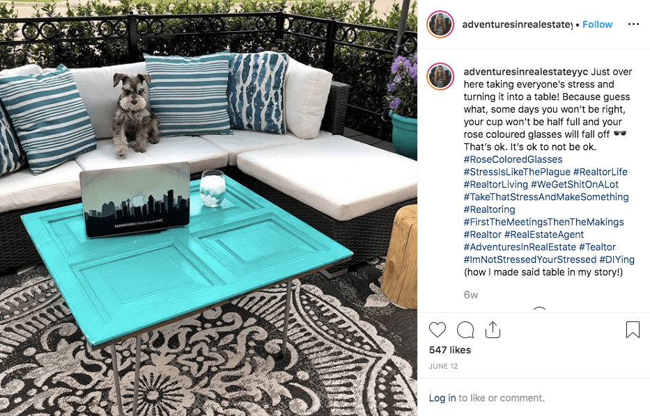 Realtor posts picture of her dog on Instagram for real estate marketing