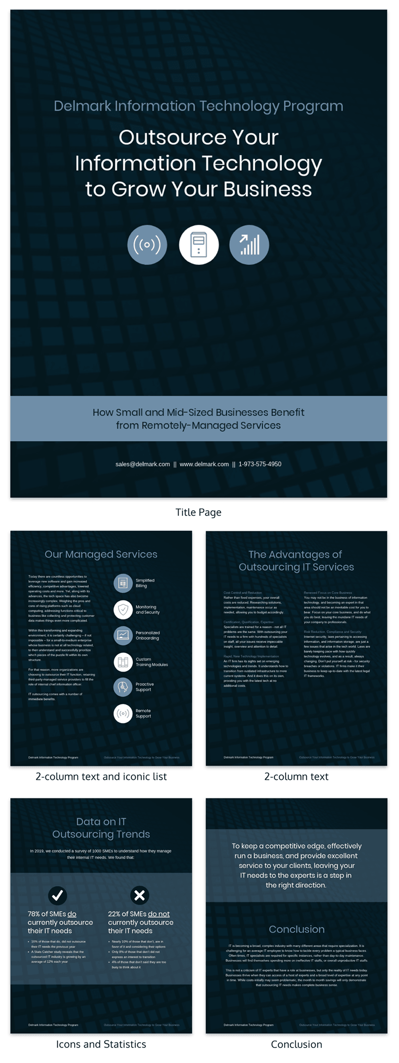 Business Information Technology White Paper Examples
