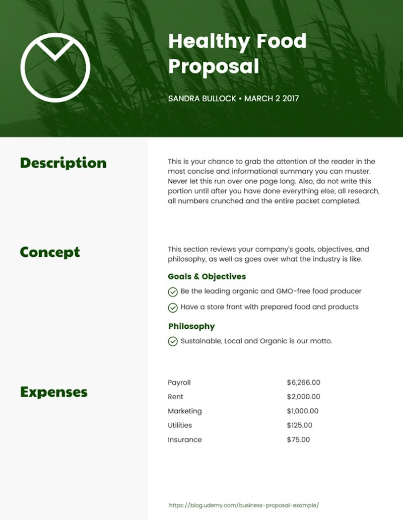 One Page Business Proposal Template