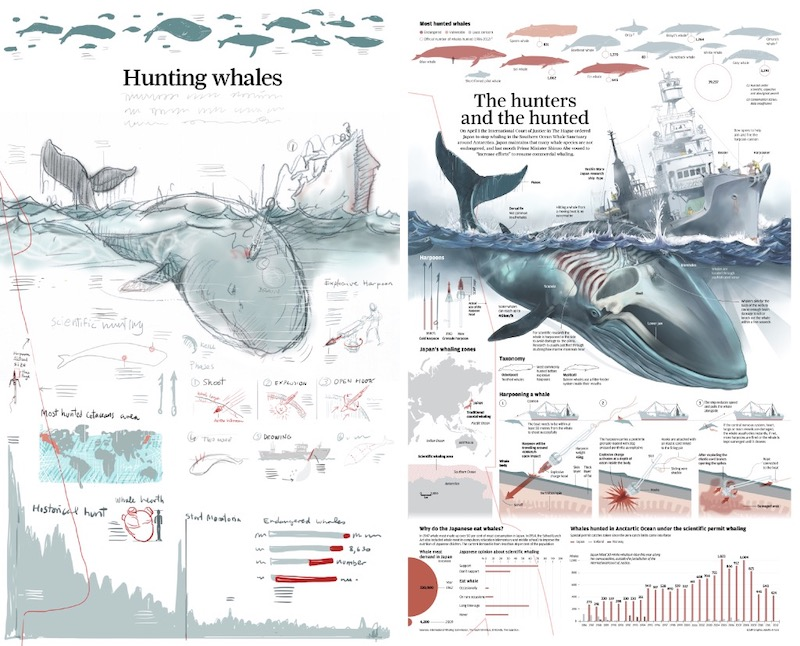 The Hunters and the Hunted Infographic Example