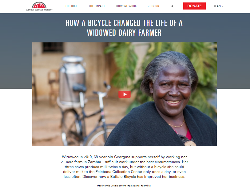 Nonprofit Storytelling Example