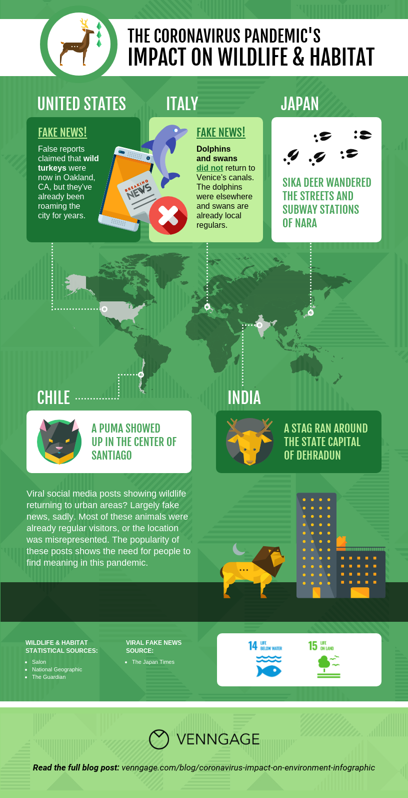 Coronavirus Impact on the Environment Wildlife