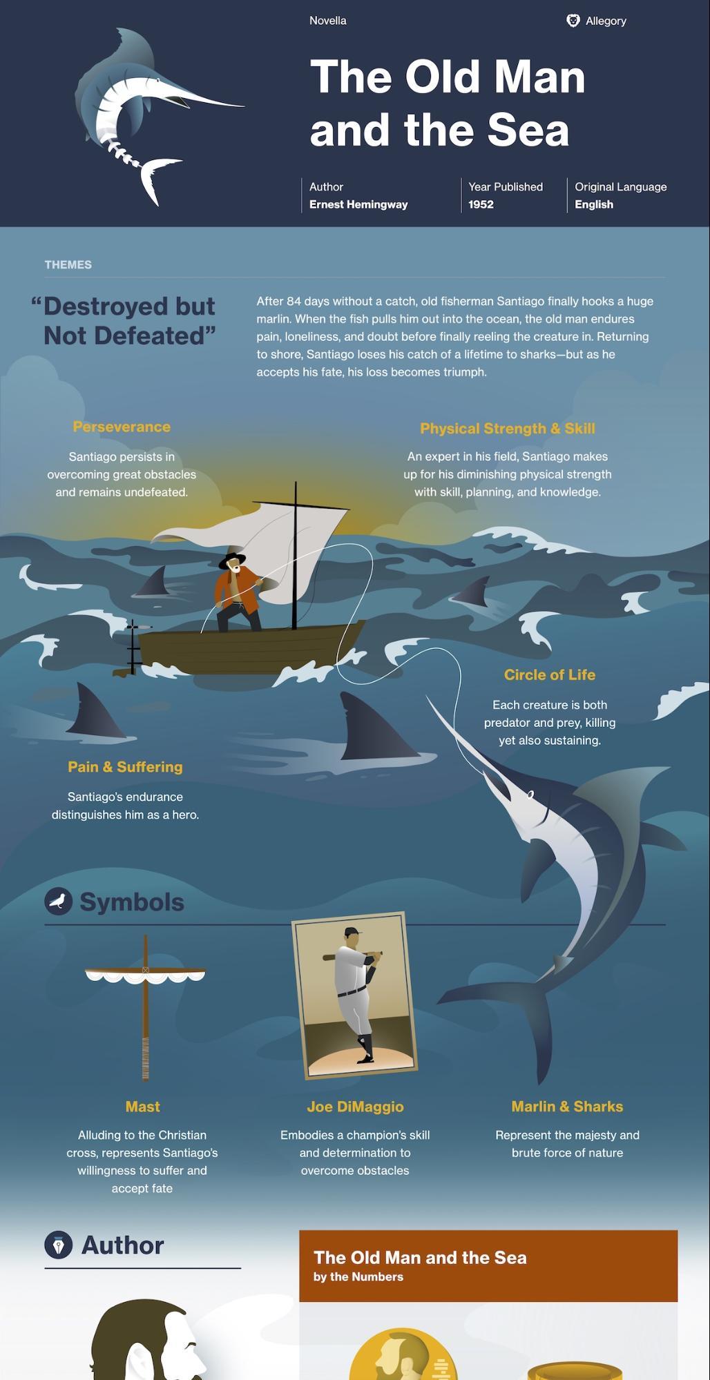 Creative Book Summary Infographic Idea1