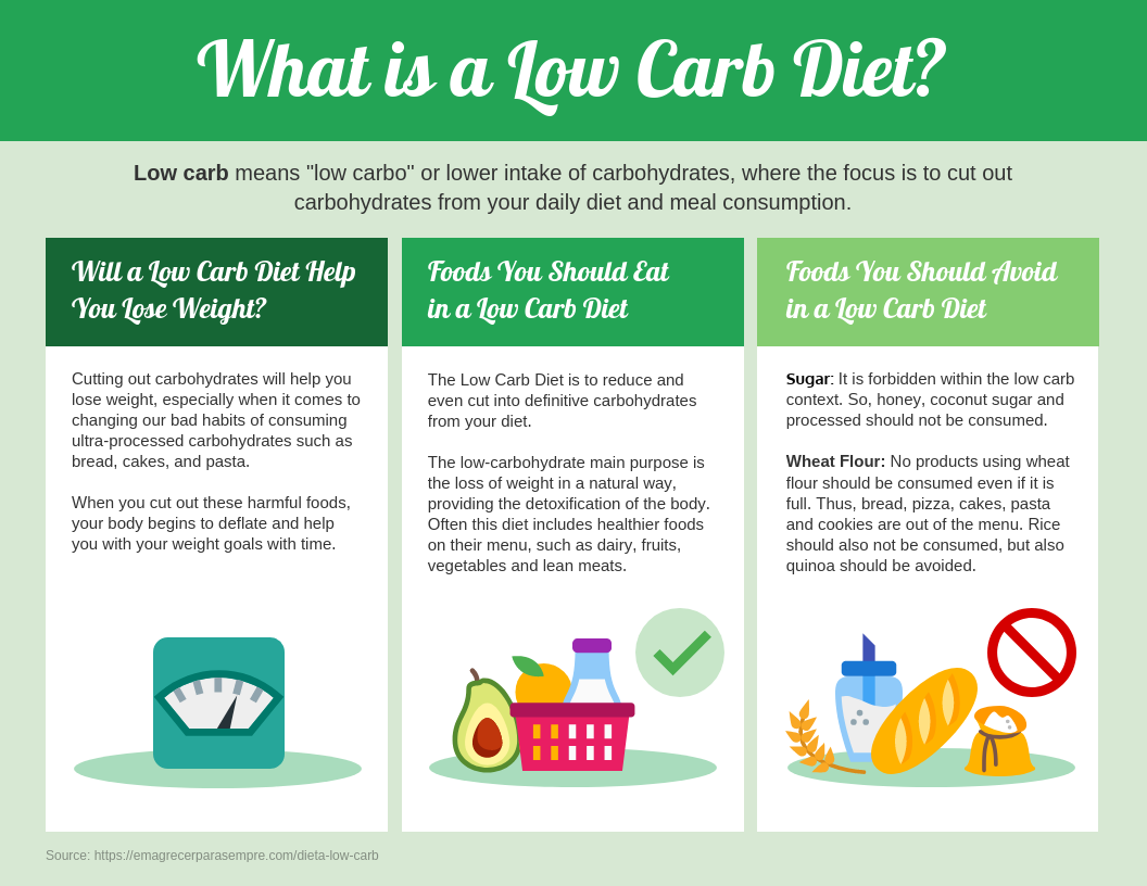 Low Carb Diet Facts Free Infographic Template