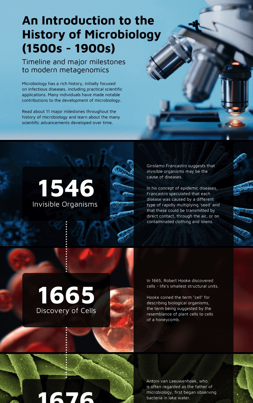 Microbiology History Timeline Infographic Idea