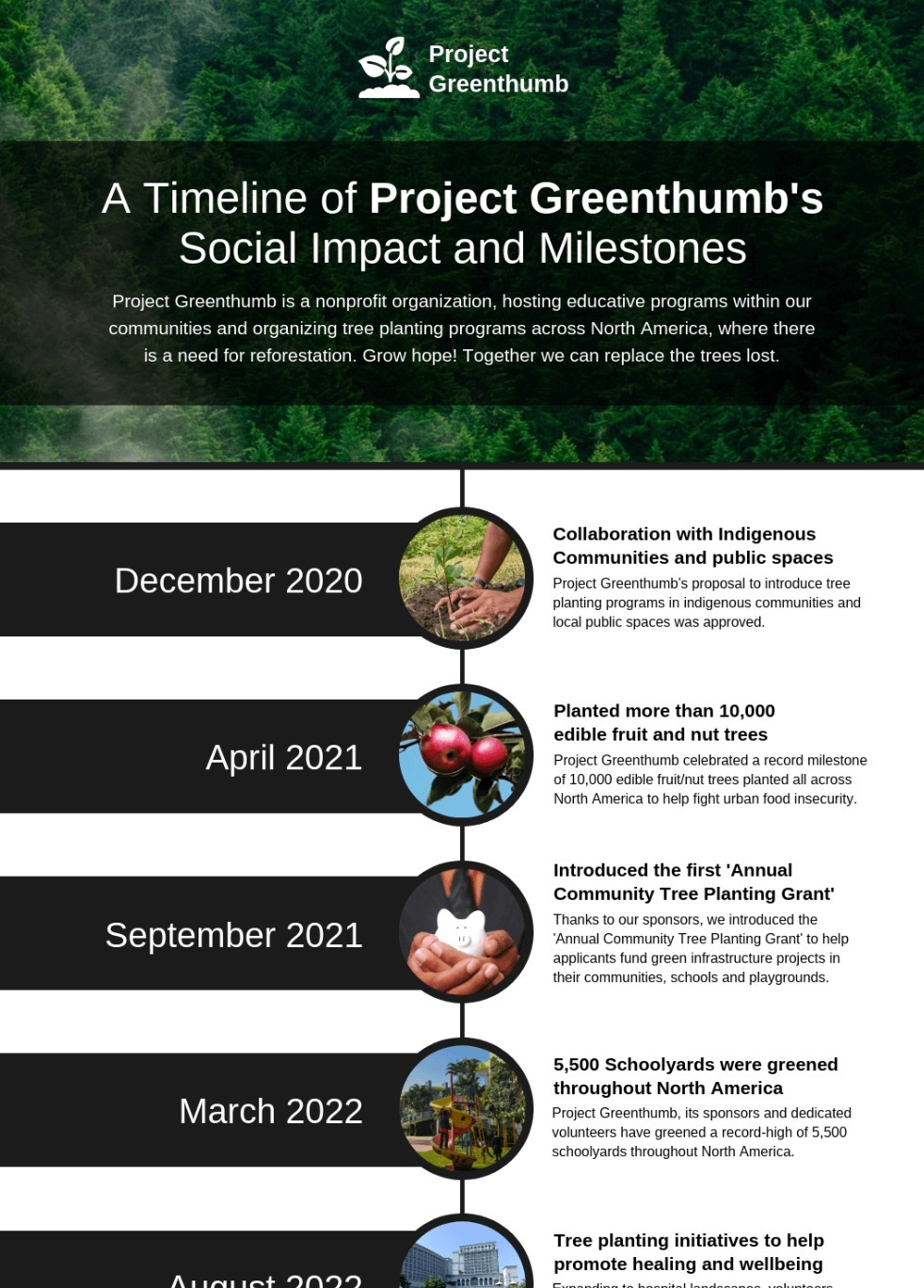 Nonprofit Project Timeline Infographic Template