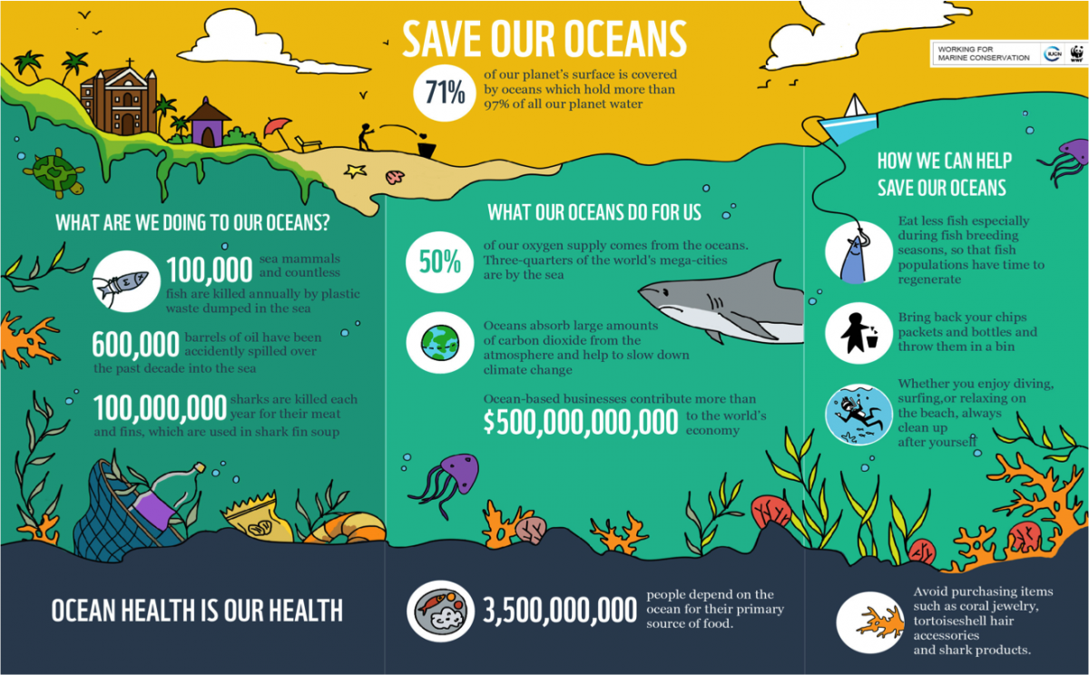 Ocean conservation Infographic