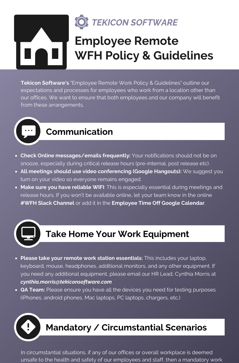 Remote Working Rules Infographic Idea