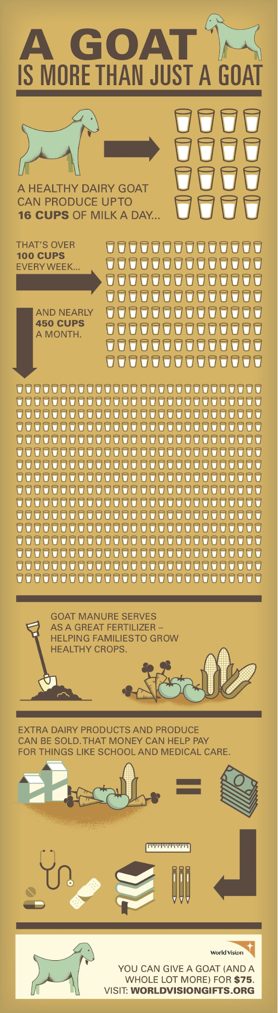 World Vision Goat Nonprofit Infographic