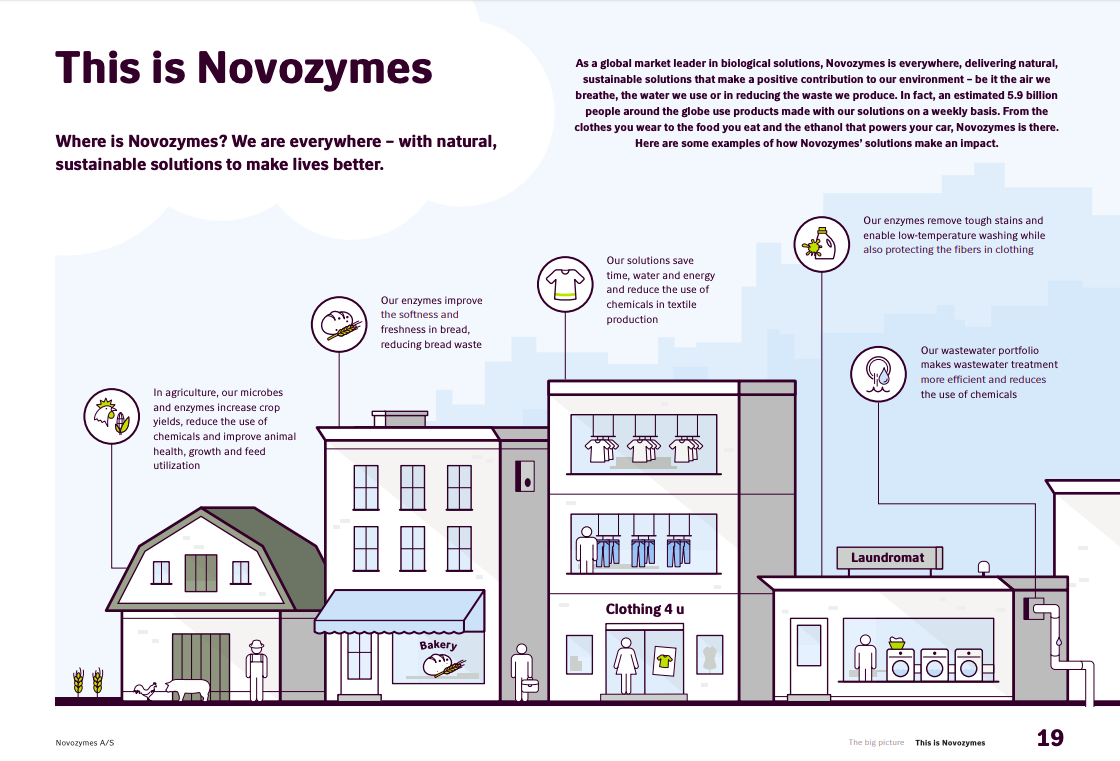 Novozymes Annual Report Example