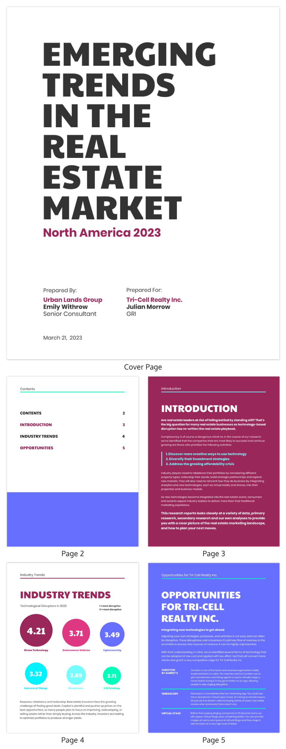 Real Estate Marketing Report Template
