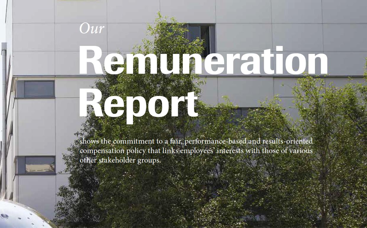 Roche Annual Report Example 2