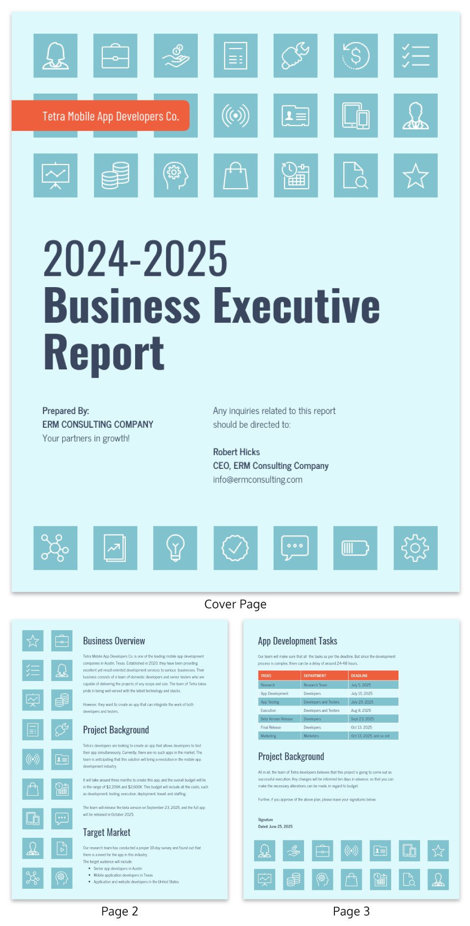 Year-End Executive Business Report Template