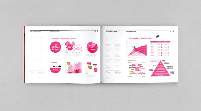 Data Viz Brand Guidelines Examples