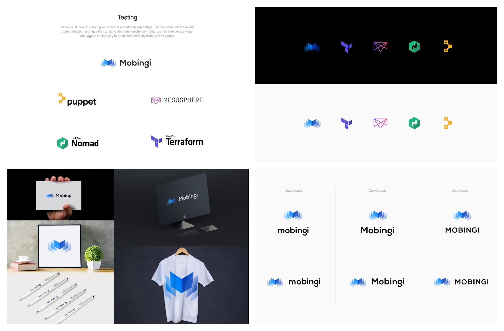 Logo Development Brand Style Guide